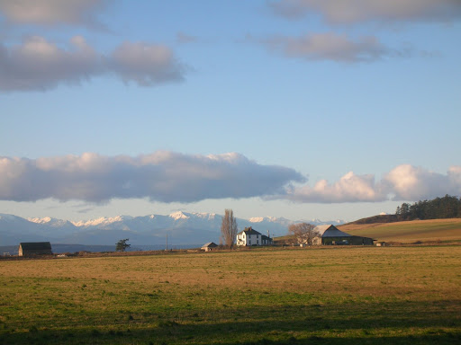 The Farm....